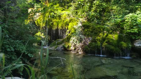 Small lake with a waterfall in a forest. Beautiful tourist place on south Italy. Wideo