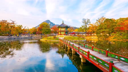 gyeongbok : Time lapse Autumn of Gyeongbokgung Palace in Seoul ,Korea.