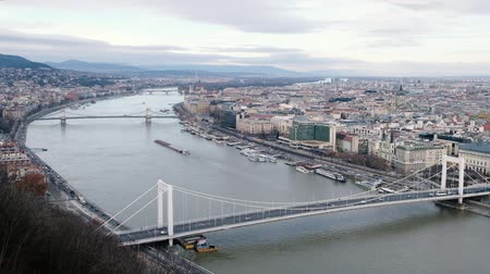 budapeste : BUDAPEST, HUNGARY- JANUARY,2019: View to danube river and Erzsebet hid, beautiful bridge