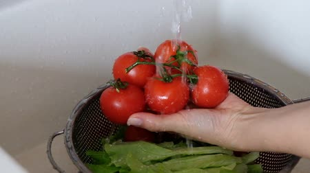 Hands of unrecognizable woman washing tomatoes. Стоковые видеозаписи