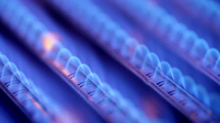 gas : Blue flames of a gas burner inside of a boiler Stock Footage