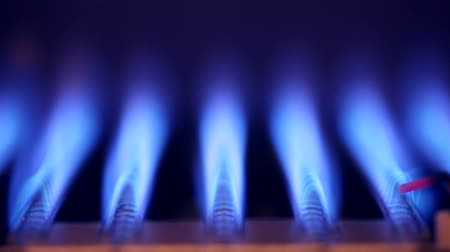 benzin : Blue flames of a gas burner inside of a boiler Stok Video