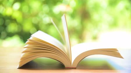 enciclopédia : Books pages turning by wind on table in garden Stock Footage