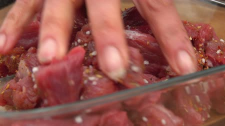 seasalt : Close-up of a hand stirring pieces of fresh raw meat with salt and spices Stock Footage