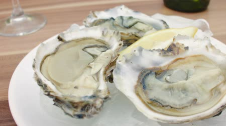ostrygi : Fresh oysters with lemon on ice. The circular movement of the camera, very close up Wideo