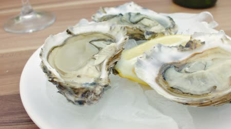 ostrygi : Hand takes a plate of fresh oysters. The circular movement of the camera, very close up Wideo