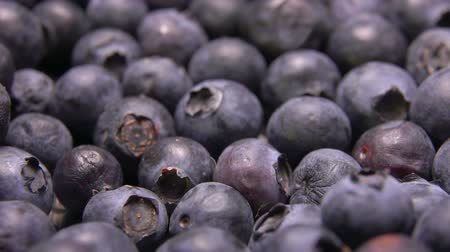 jagoda : Close-up of big juicy blueberries rolling on the surface of berrys