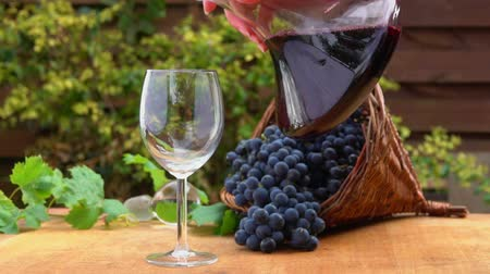 grapevine : Wine is poured from a glass decanter into a wine glass in the background of a basket of ripe grapes Stock Footage