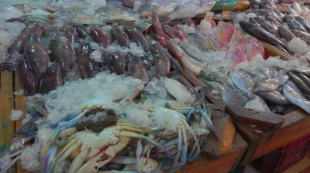 скумбрия : Squid, crab, lobster and various varieties of fish in the showcase of the fish market