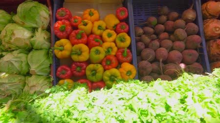 bakłażan : Bright juicy fresh greens and vegetables on a beautifully decomposed showcase in the vegetable market Wideo