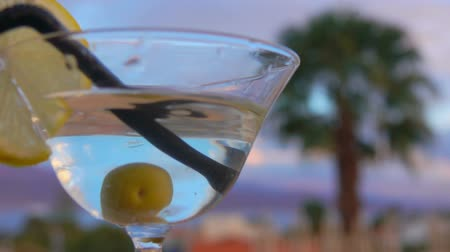 vermouth : A black straw is putting in a glass with martini, olive and lemon on a background of palm trees