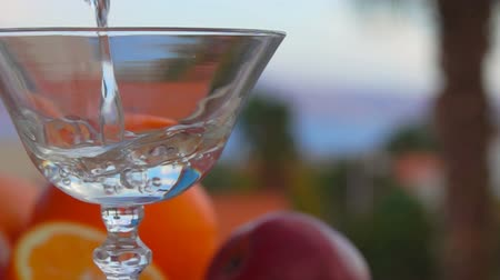 vermouth : Martini is poured into a glass on a background of citrus fruits and palm trees