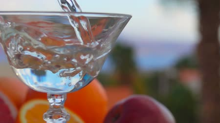 grejpfrut : Martini is poured into a glass on a background of citrus fruits and palm trees