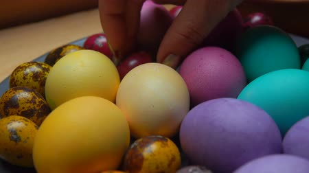 spring flowers : Womans hand putr red and green colored quail egg it to beauterfull festive painted easter eggs on a gray plate