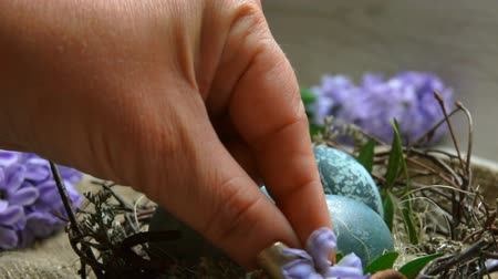 sümbül : Hands decorate Easter nest with dyed blue eggs a hyacinth flower . Festive Easter table setting.