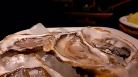 oysters : Panorama of the table is a plate of fresh oysters on ice Stock Footage