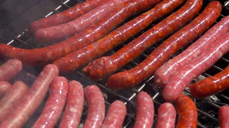 spices : Sausages are grilled on the grill over an open fire. Stock Footage