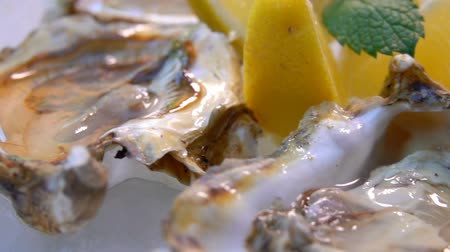 bivalve : Open oysters on a white plate with ice and lemon. Very close up