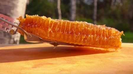sealed : Kitchen spatula spreads a rectangular piece of honeycomb with honey on a wooden board Stock Footage