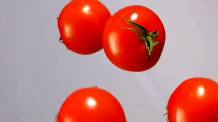 refresco : Red ripe tomatoes are falling down on a white background in slow motion Stock Footage