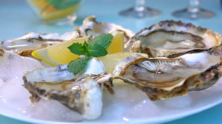 oysters : Female hand takes an oyster shell from a white plate with ice