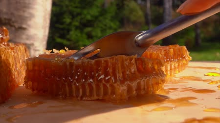 mead : Fork breaks off and picks up a piece of honeycomb from a wooden board. Honeycombs lie on a wooden table on a sunny summer day in the fresh air Stock Footage