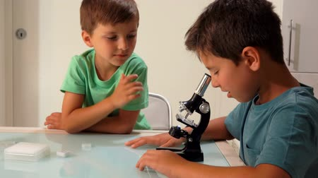 učit se : Older brother is looking through a microscope. The younger brother is waiting for his turn