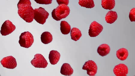 framboesas : Slow motion of ripe juicy raspberry fly and rotates in the air on a white background