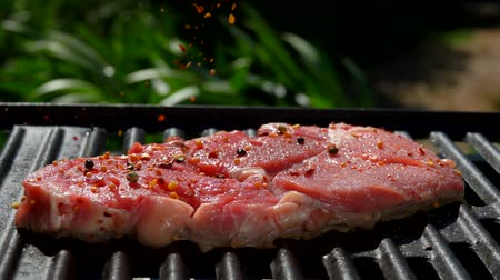 biber tanesi : Mixture of spices falling on a pork steak on a hot grill over an open fire in slow motion close-up Stok Video