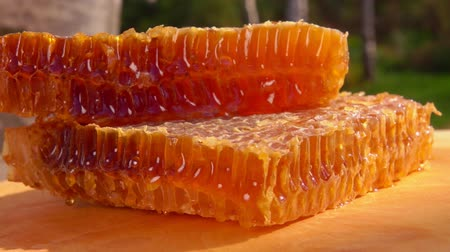 sealed : Sweet honeycombs full of honey lie on a wooden board in the fresh air on a sunny day Stock Footage