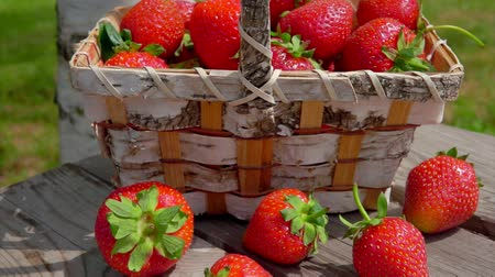 bűbájos : Panorama from a wooden table with strawberries on a birch basket full of juicy red berries on a bright sunny day