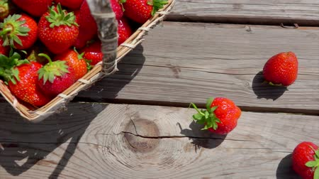 bűbájos : Sweet tasty strawberries falling on a wooden table near the basket on a bright sunny day Stock mozgókép