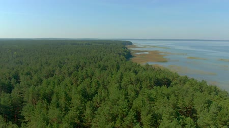 reservoir : Aerial panorama from the green forest to the water surface of the lake. Aerial Stock Footage