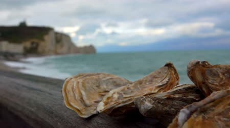 regionální : Stack of fresh closed oysters against the ocean in Etretat, France