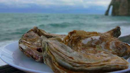 normandie : Close-up of fresh closed oysters on a plate against the ocean in Etretat, France