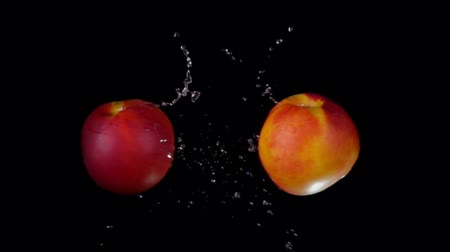 meruňka : Two sweet ripe peaches collide splashing water on a black background