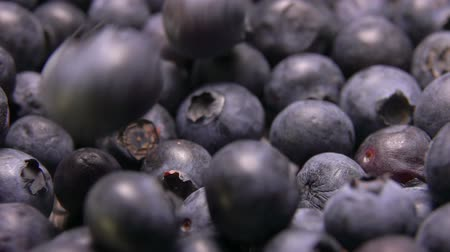 vitamine c : Big tasty ripe blueberries fall and bounce on the berries