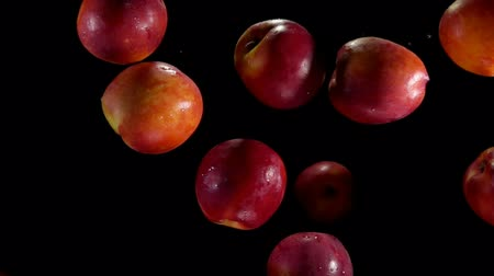 нектарин : Large juicy tasty nectarines fly up and bounce on a black background Стоковые видеозаписи