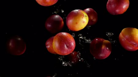 nectarina : Large juicy nectarines fly up and bounce in splashes of water on a black background