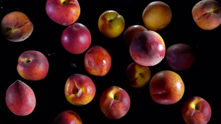nectarina : Juicy tasty peaches fly up and bounce in splashes of water on a black background Archivo de Video