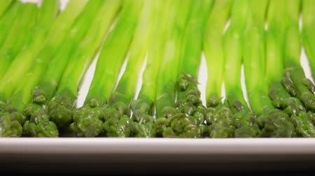 espargos : Panorama of boiled green asparagus spears lying on a long white plate