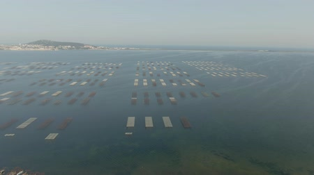sete : Aerial shot of oyster farms near Sete city on Etang de Thau, Mediterranean, France