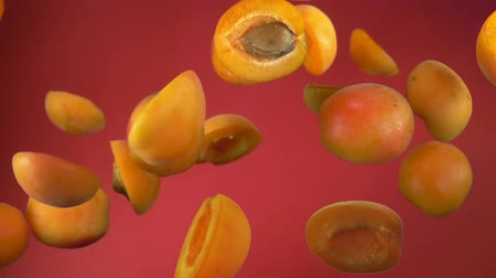 Delicious juicy apricot halves bounce on a red background Стоковые видеозаписи
