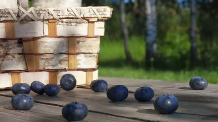bilberry : Big blueberries fall on a wooden table in slow motion on thebackground of a basket