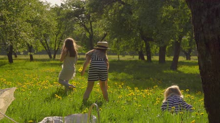 Picnic in the apple orchard. Girls in vintage hats play, run and pick dandelion flowers. Back view Стоковые видеозаписи