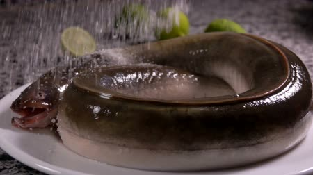 paling : White plate with a fresh eel sprinkled with a salt on the grey stone table on the background of green limes Stockvideo