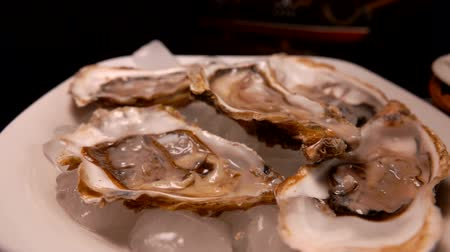 oysters : Fresh open delicious oysters on a white plate on the ice Stock Footage