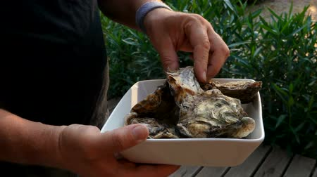 oysters : Man studying freshly caught mediterranean oysters on a white plate Stock Footage