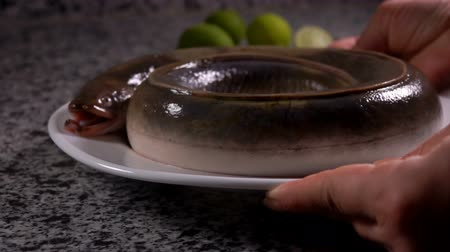 フィッシャー : White plate with a fresh eel is placed on the grey stone table on the background of green limes