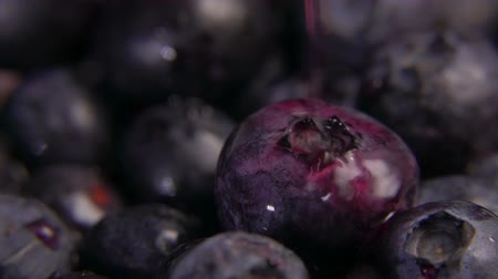 césar : Close up drops of juice drops falling on large ripe tasty blueberries Stock Footage